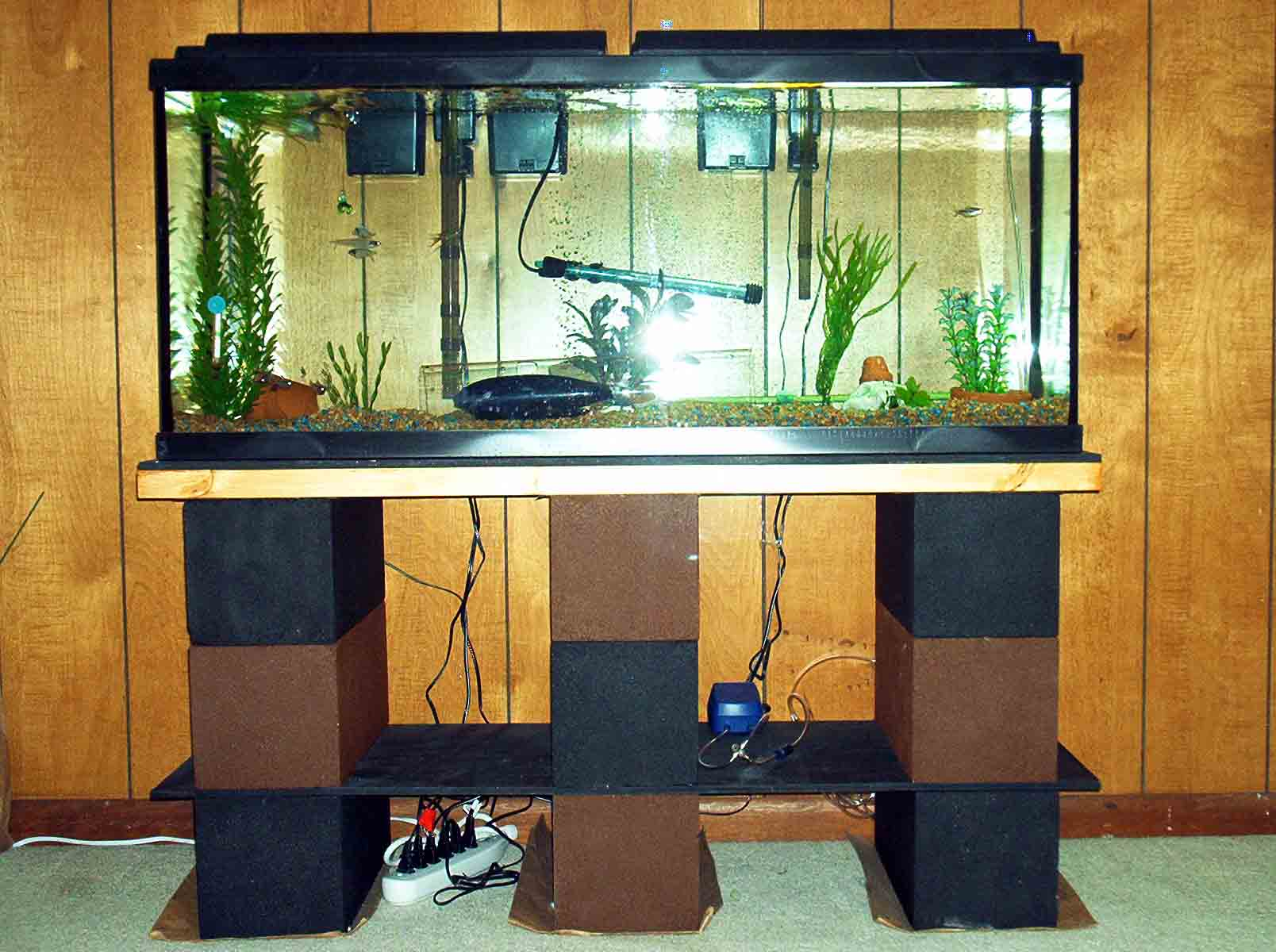 how to build your own 10 gallon fish tank stand