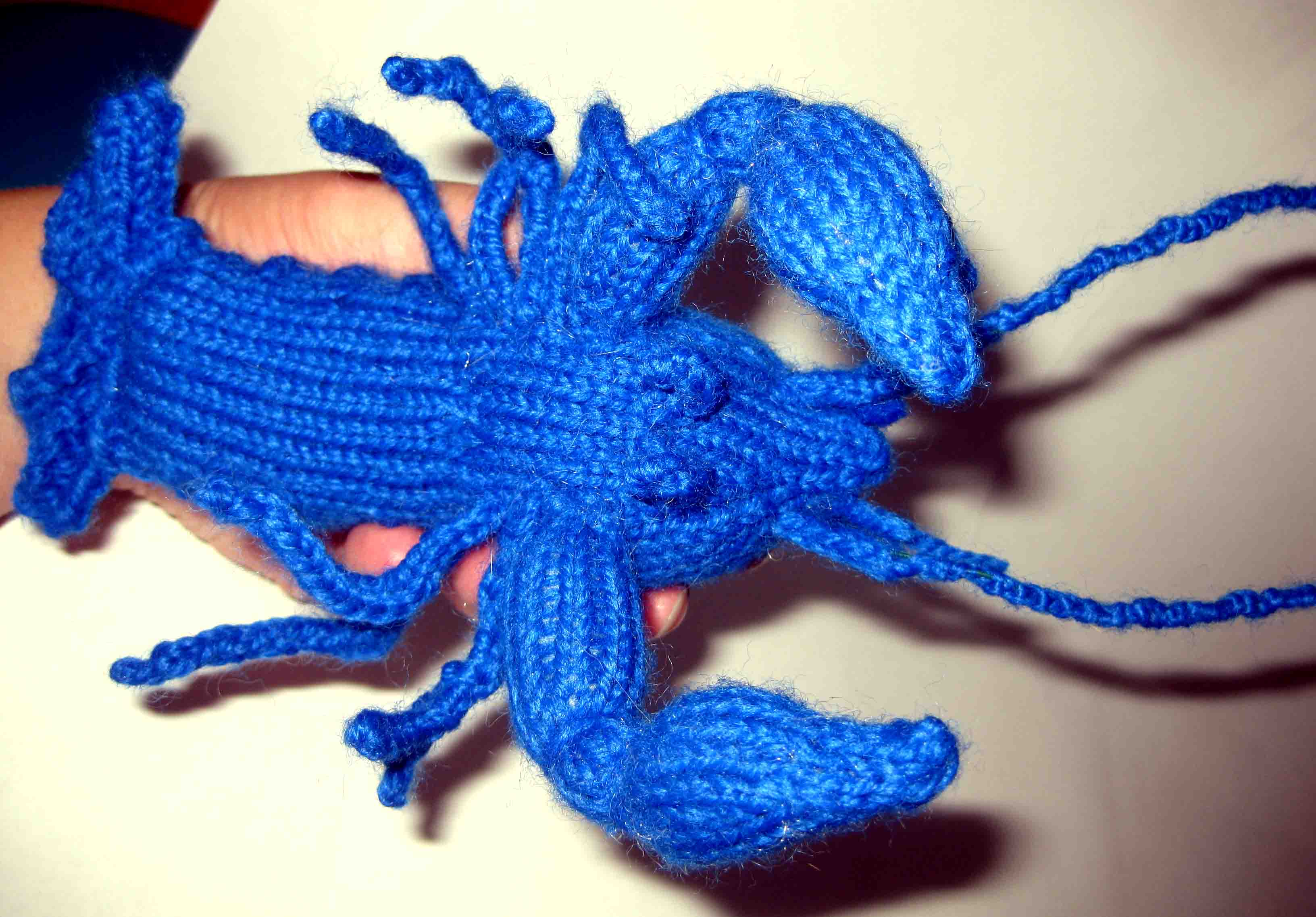 Knitting: Blue Crayfish | Random Bits of Projects