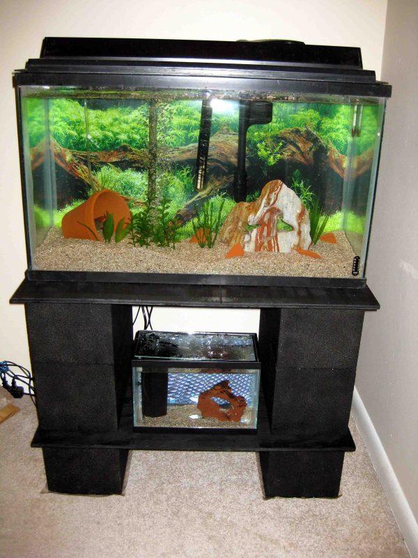 how to build wood aquarium