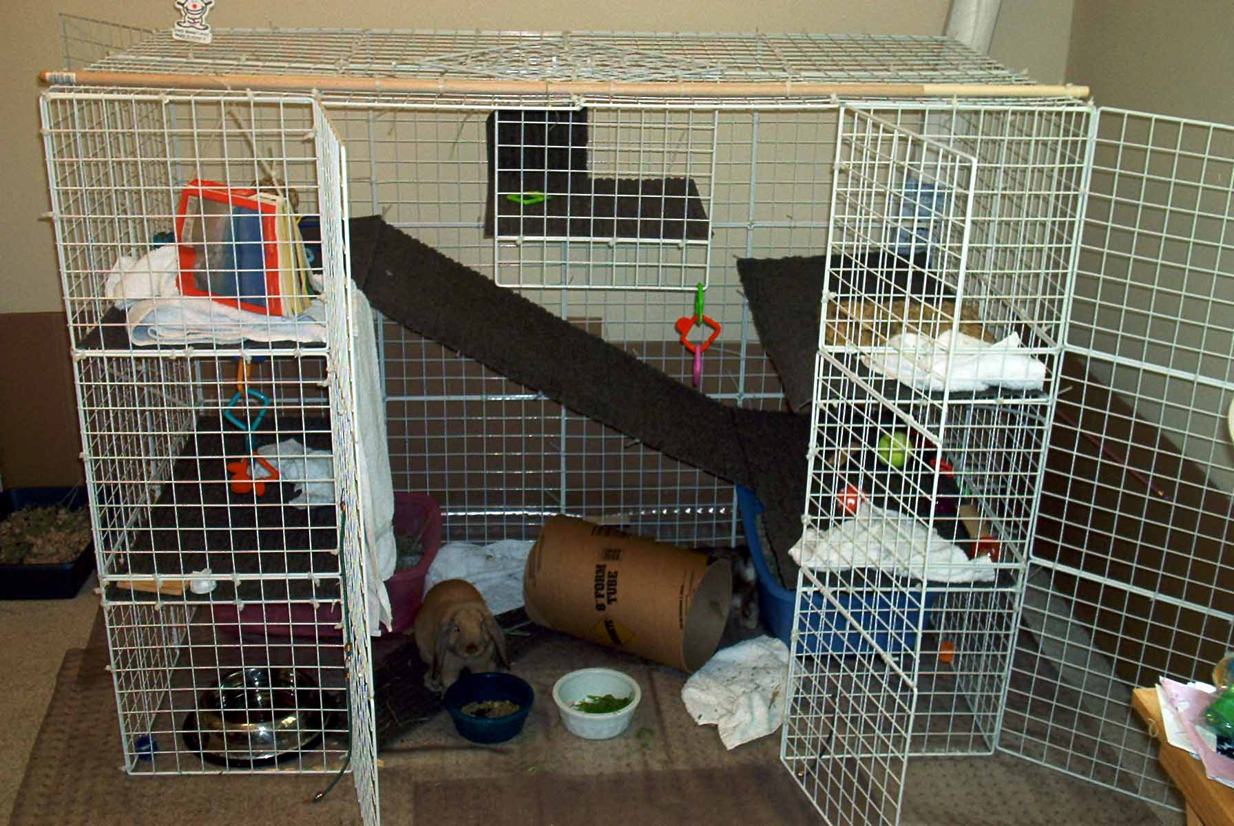 The gallery for homemade chinchilla cage - How to make a rabbit cage ...